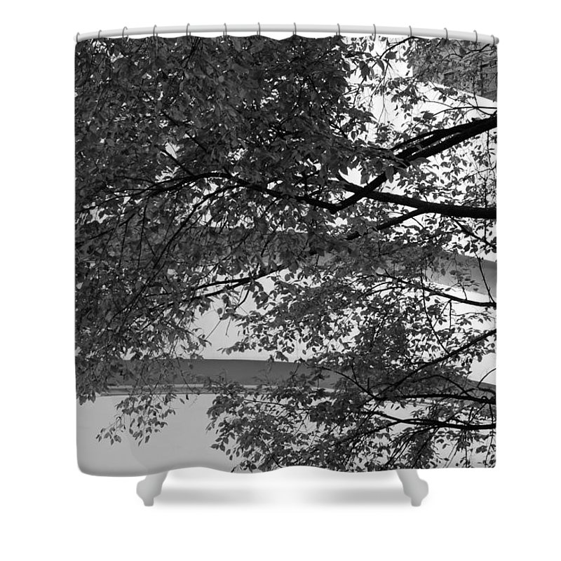 Scenic Shower Curtain featuring the photograph Guggenheim And Trees In Black And White by Rob Hans