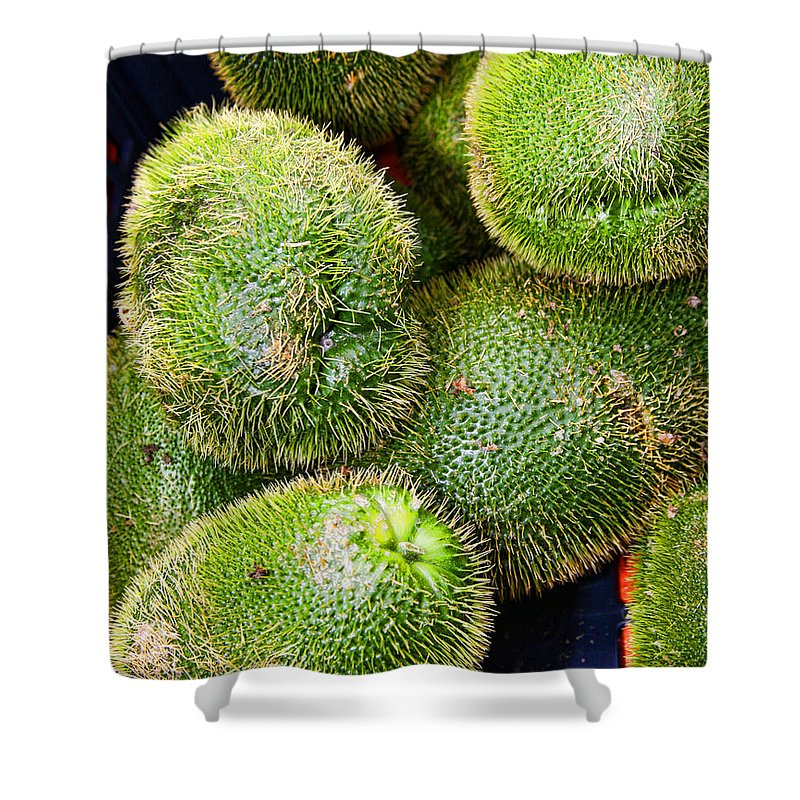 Mango Shower Curtain featuring the photograph Hairy Peary Chayote Squash By Diana Sainz by Diana Raquel Sainz