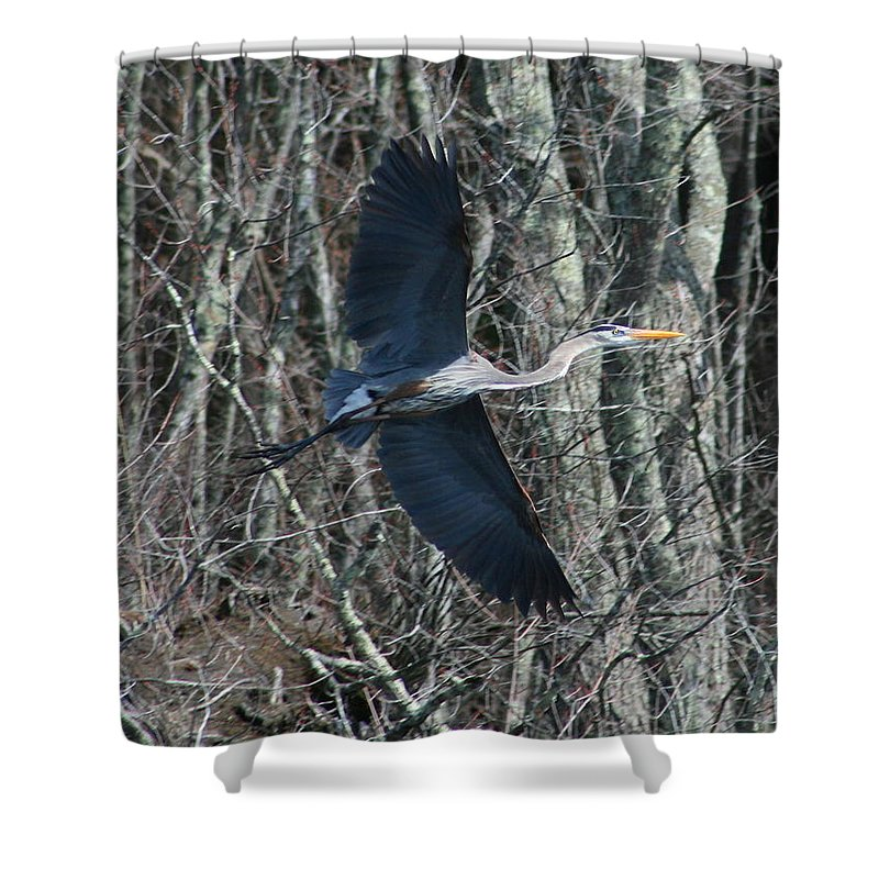 Heron Shower Curtain featuring the photograph Hallelujah by Neal Eslinger