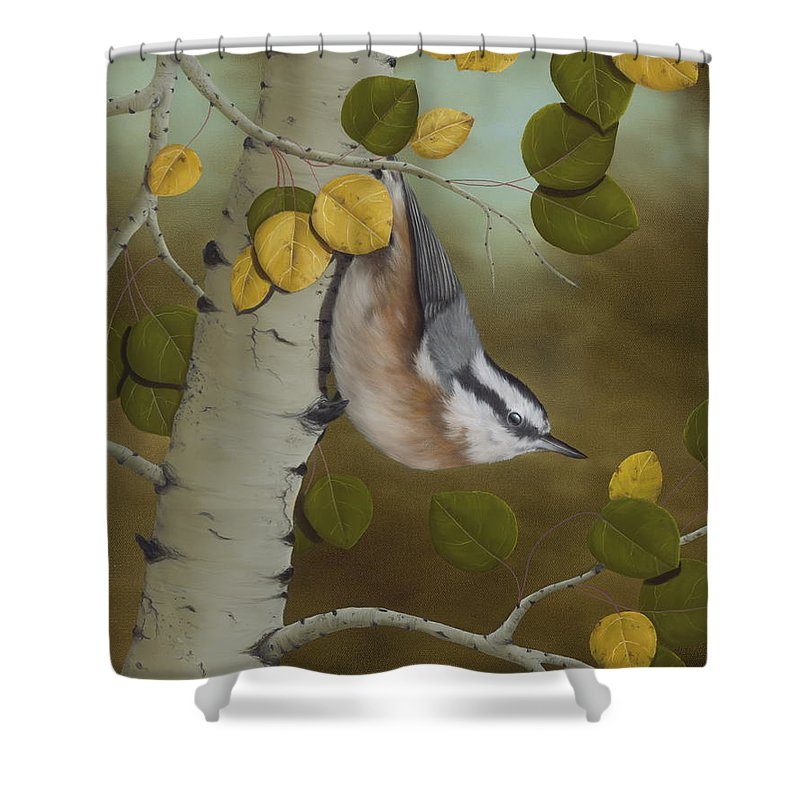 Animals Shower Curtain featuring the painting Hanging Around-red Breasted Nuthatch by Rick Bainbridge