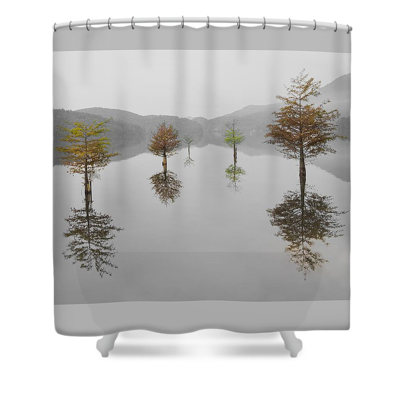 Appalachia Shower Curtain featuring the photograph Hanging Garden by Debra and Dave Vanderlaan
