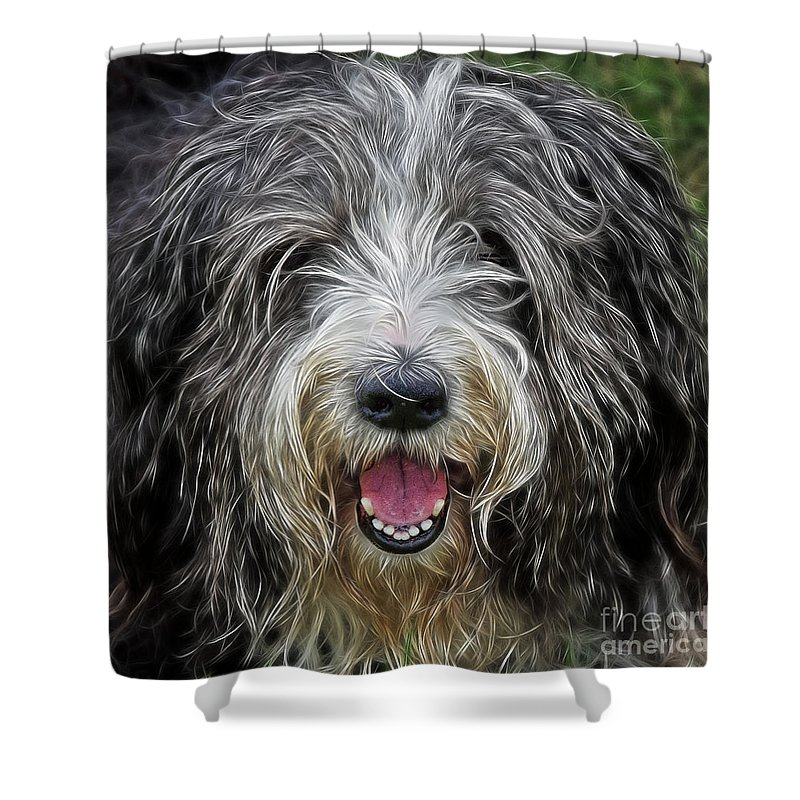 Peek-swint Shower Curtain featuring the photograph Happy Dog by Susie Peek