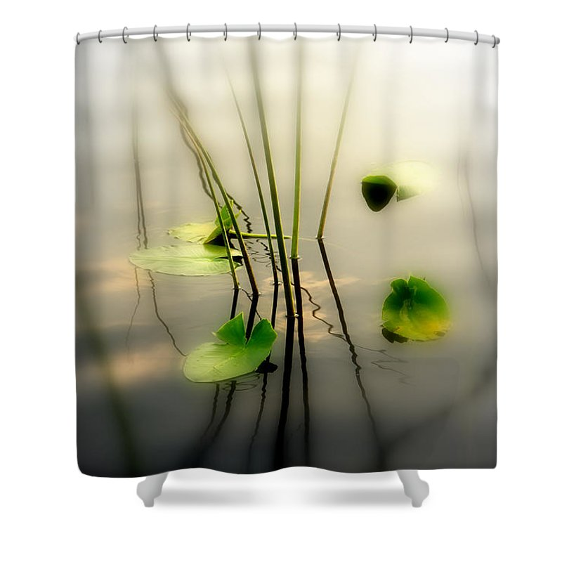 Zen Shower Curtain Featuring The Photograph Harmony Photography II By Susanne Van Hulst