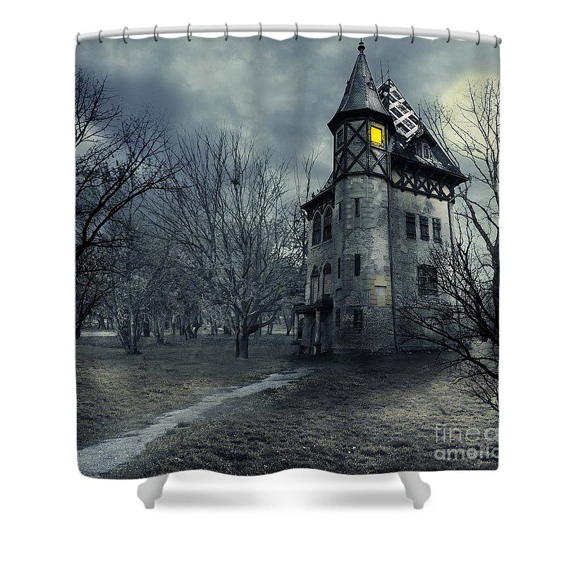 Medieval Photographs Shower Curtains