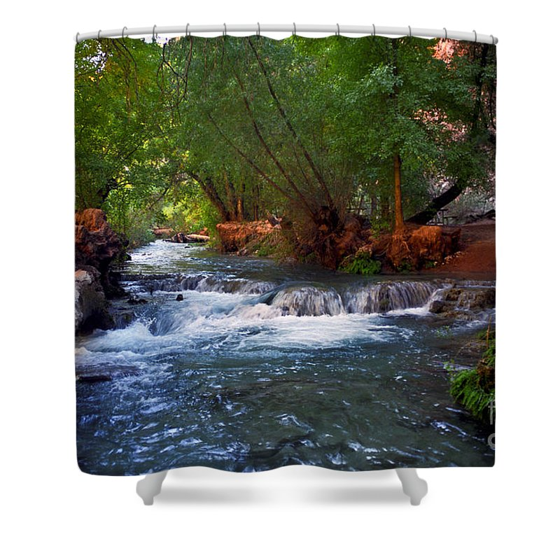 Arizona Shower Curtain featuring the photograph Havasu Creek by Kathy McClure