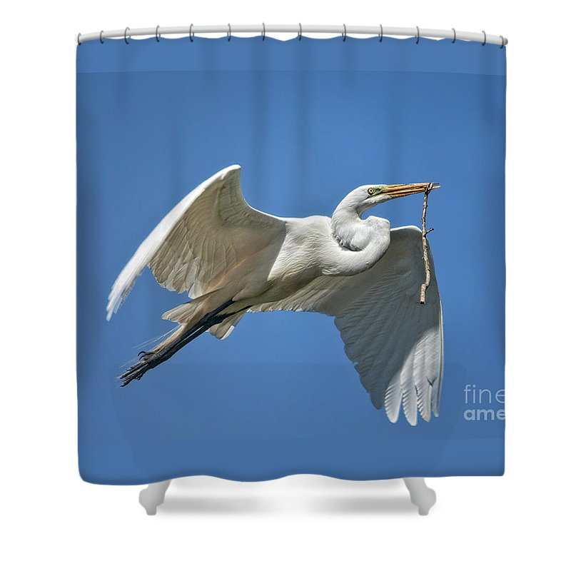 Shower Curtain featuring the photograph Heading Back by Claudia Kuhn