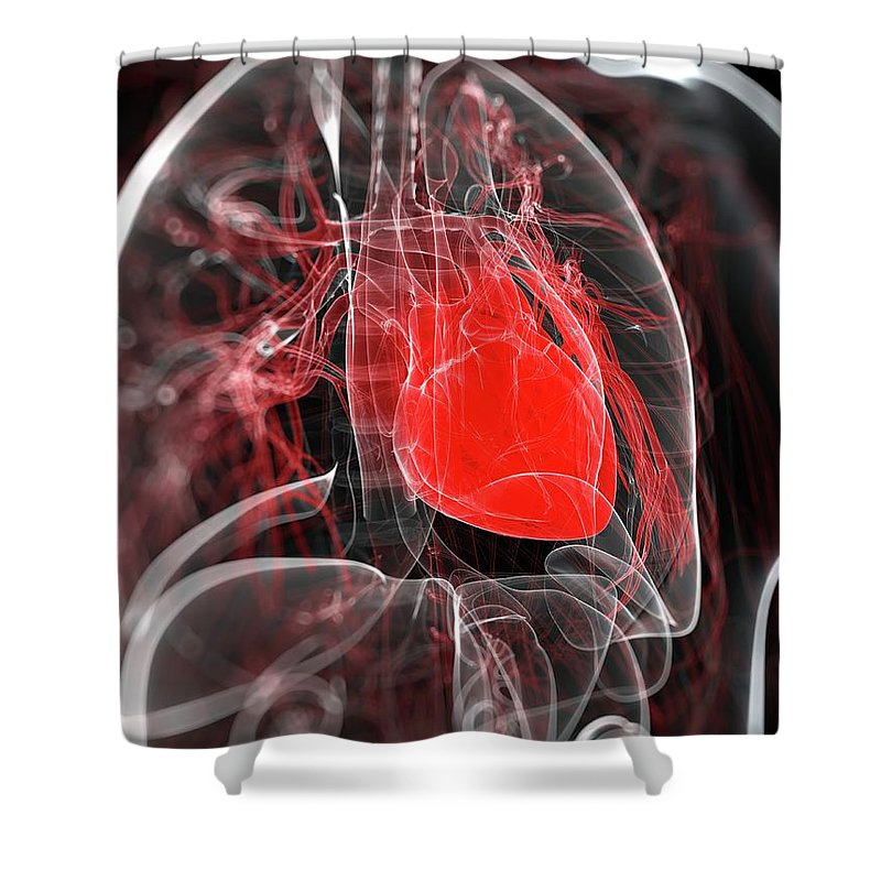 Physiology Shower Curtain featuring the digital art Heart Anatomy, Artwork by Sciepro
