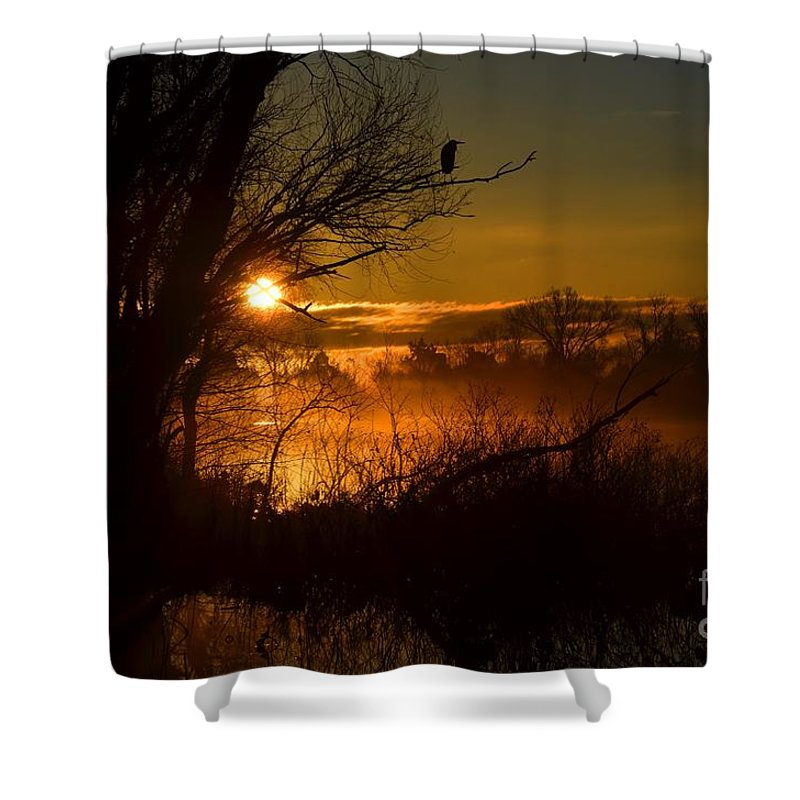 Heron Shower Curtain featuring the photograph Heron At Sunrise by Deanna Cagle