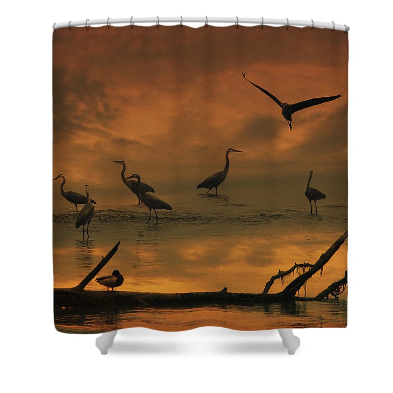 Heron Shower Curtain featuring the photograph Heron Heaven by Amy Jackson