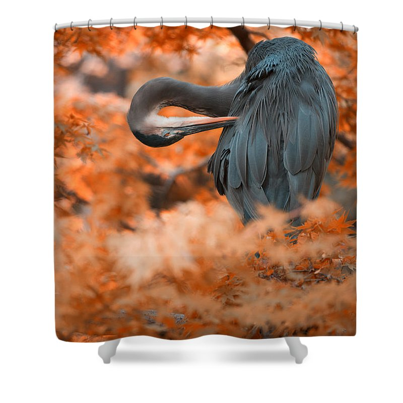 Herons Shower Curtain featuring the photograph Heron Wonderland V3 by Douglas Barnard