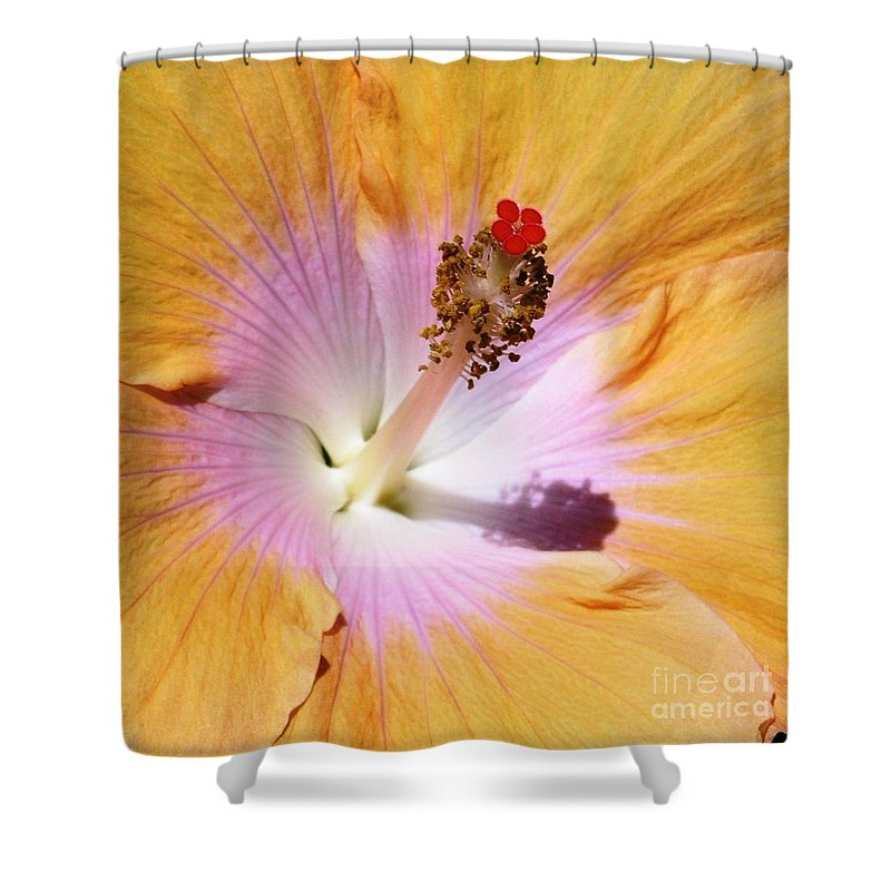 Hibiscus Shower Curtain featuring the photograph Hibiscus Center by Mary Deal