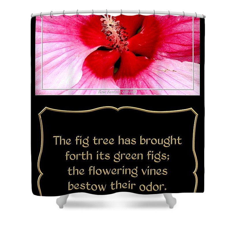Hibiscus Closeup With Bible Quote From Song Of Songs Shower Curtain
