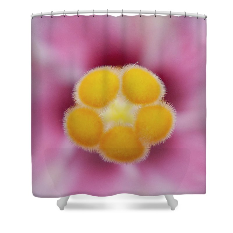 Heiko Shower Curtain featuring the photograph Hibiscus by Heiko Koehrer-Wagner