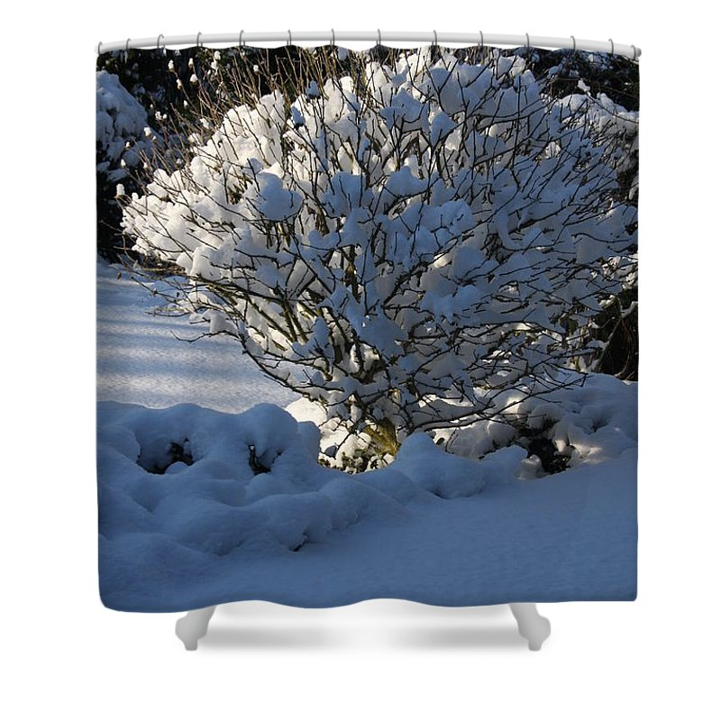 Winter Shower Curtain featuring the photograph Hibiskus In The Wintertime by Christiane Schulze Art And Photography