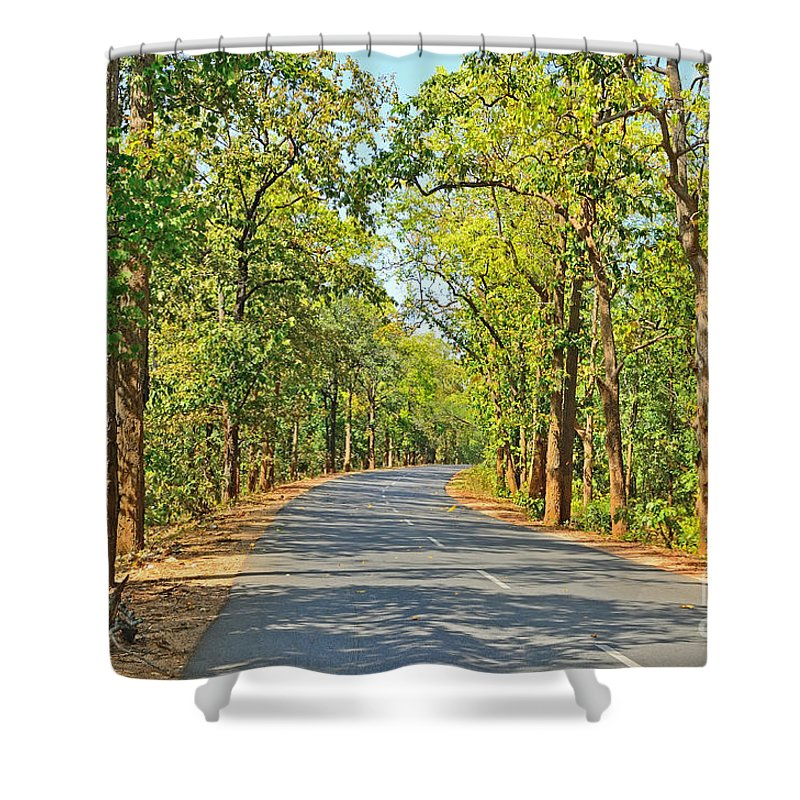 Highway Shower Curtain featuring the photograph Highway In The Forest by Image World