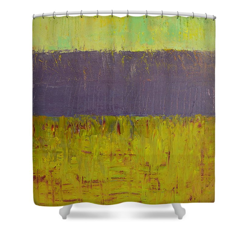 Abstract Expressionism Shower Curtain featuring the painting Highway Series - Lake by Michelle Calkins