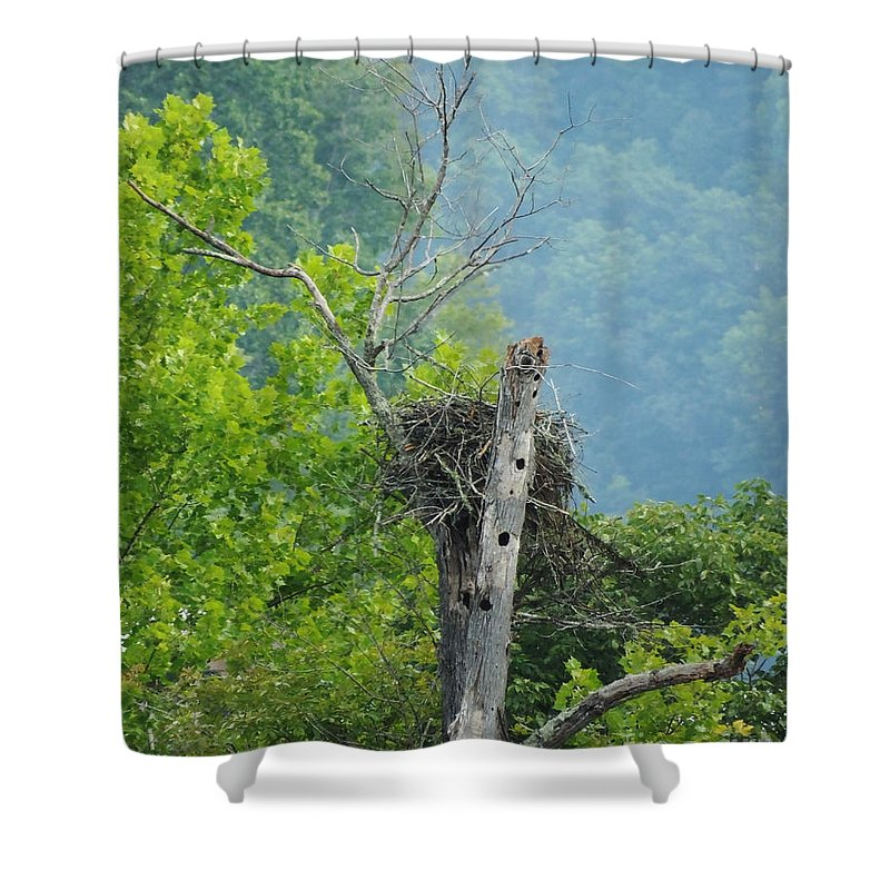 Eagles. Osprey Shower Curtain featuring the photograph Home Sweet Home Watts Bar Lake by Lizi Beard-Ward
