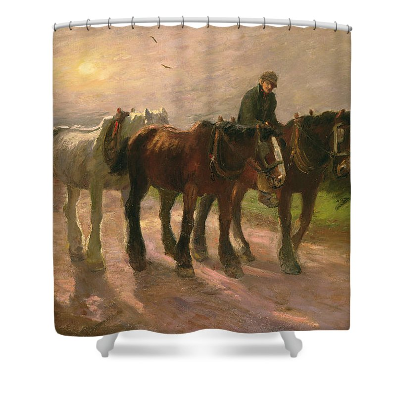 Horse Shower Curtain featuring the painting Homeward by Harry Fidler