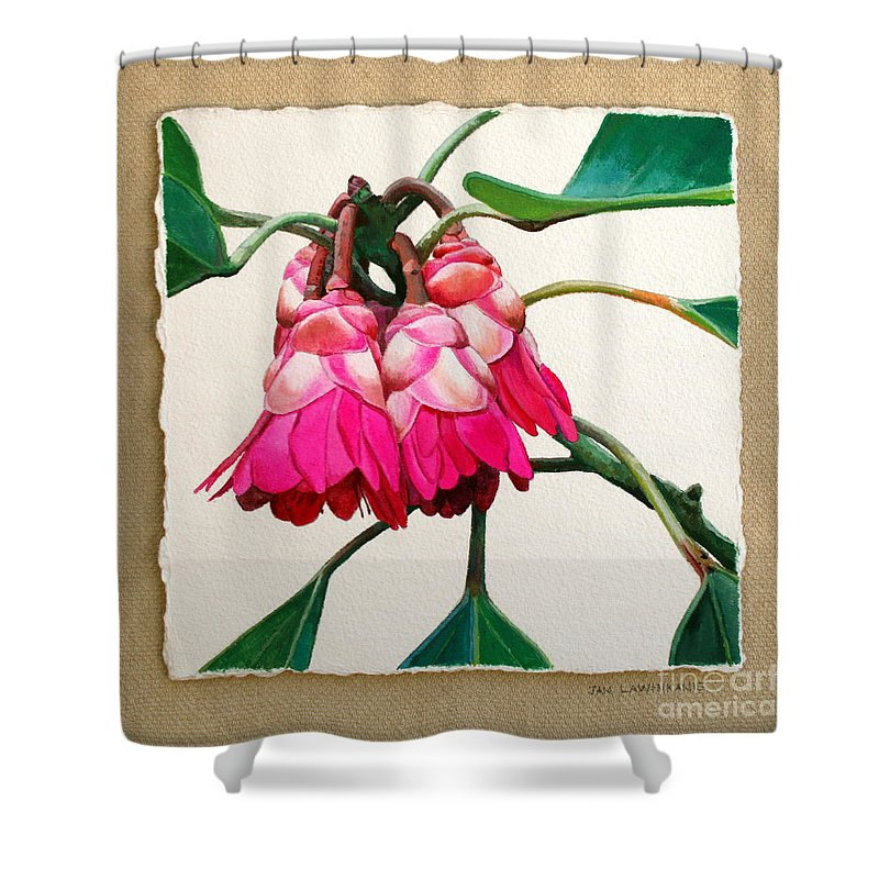 Jan Lawnikanis Shower Curtain featuring the painting Hong Kong Rose by Jan Lawnikanis