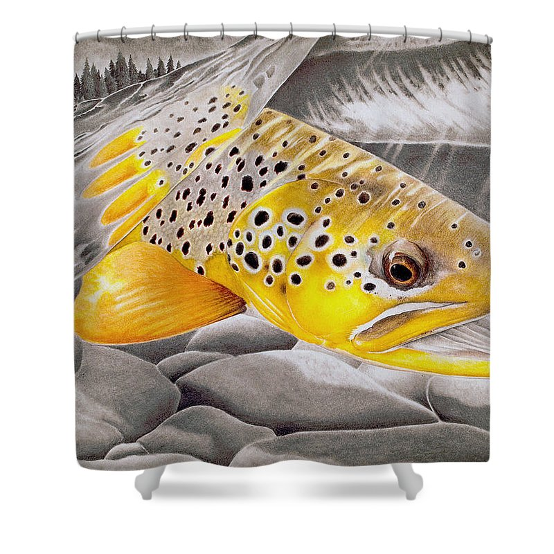Salmon Shower Curtains