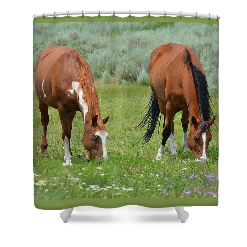 Animals Shower Curtain featuring the photograph Horse Heaven by Crystal Miller