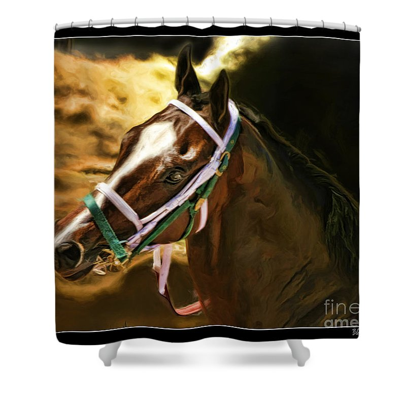 Last Memories Shower Curtain featuring the photograph Horse Last Memories by Blake Richards