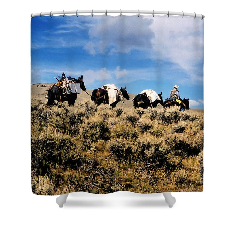 Horses Shower Curtain featuring the photograph Horse Pack  #003 by J L Woody Wooden