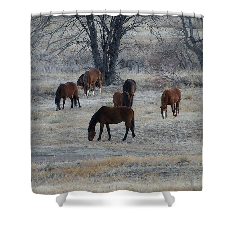 Fields Shower Curtain featuring the digital art Horses by Ernie Echols