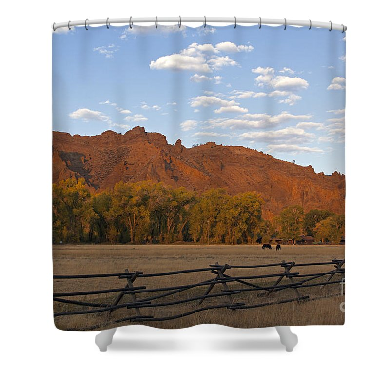 Horses Shower Curtain featuring the photograph Horses In North Fork Canyon  #4106 by J L Woody Wooden
