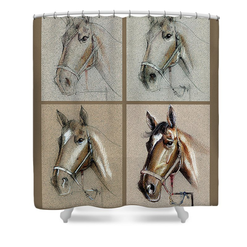 Pastel Shower Curtain featuring the drawing How To Draw A Horse Portrait by Daliana Pacuraru