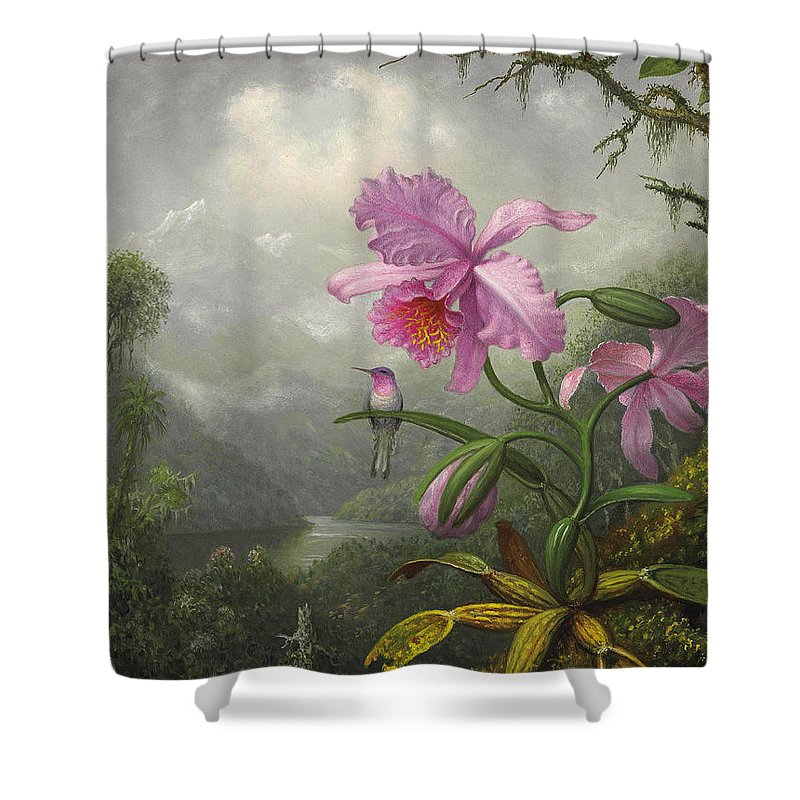 Orchid Shower Curtain Featuring The Painting Hummingbird Perched On Plant By Martin Johnson Heade