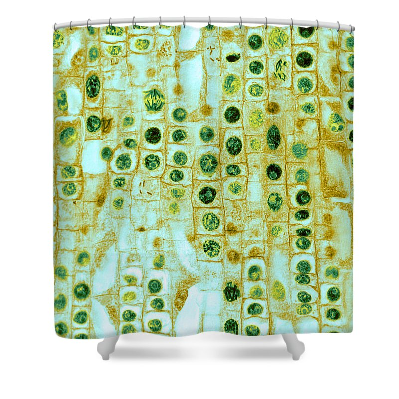 Micrography Shower Curtains