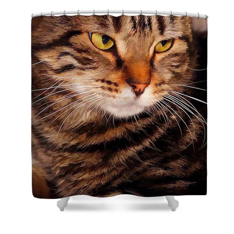 Brown Tabby Shower Curtain featuring the photograph I Am Smiling by Joyce Baldassarre