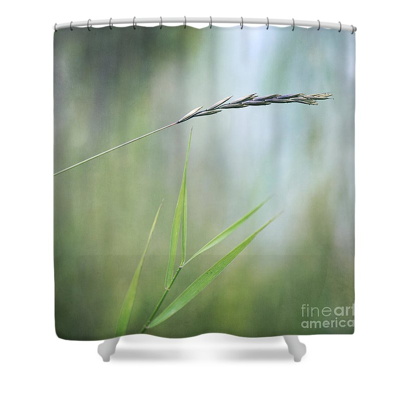 Spike Shower Curtain featuring the photograph I Will Hold You by Priska Wettstein