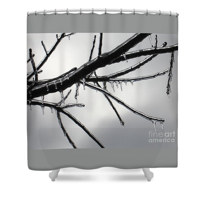 Winter Shower Curtain featuring the photograph Iced Tree by Ann Horn