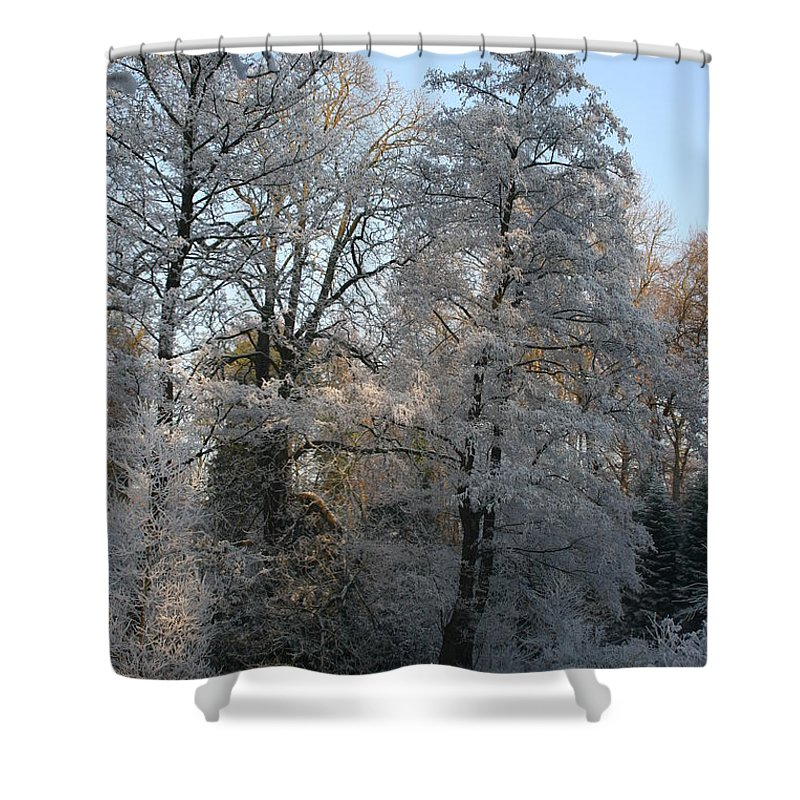 Ice Shower Curtain featuring the photograph Iced Trees by Christiane Schulze Art And Photography