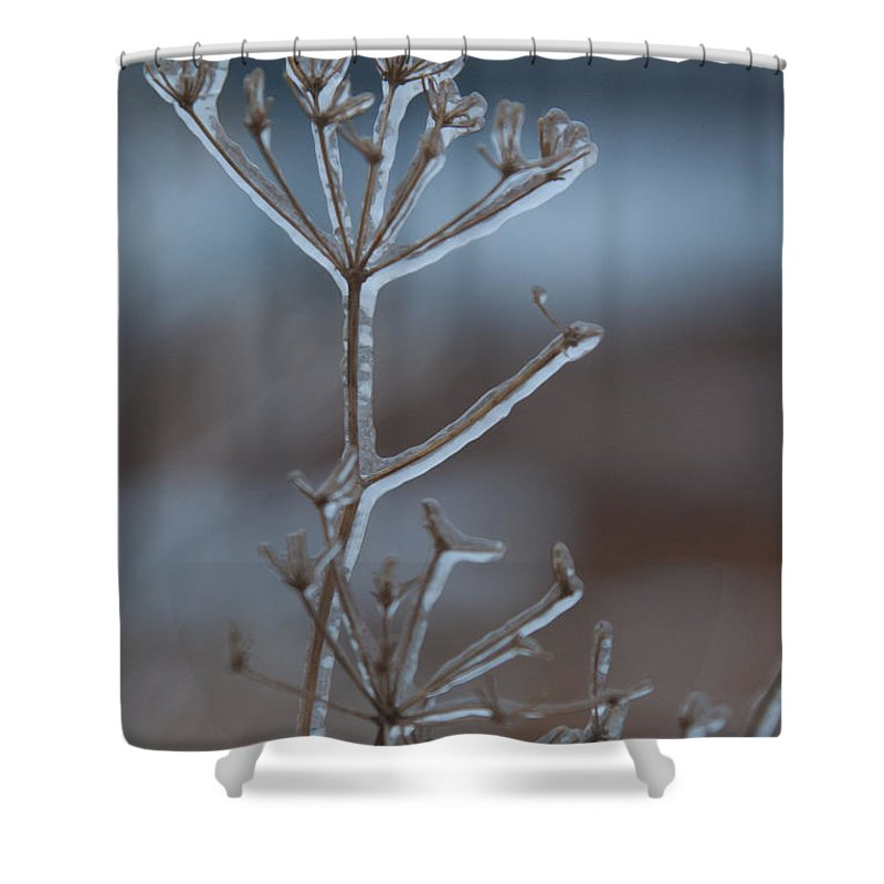Ice Shower Curtain featuring the photograph Icy Shapes And Lines by Cascade Colors