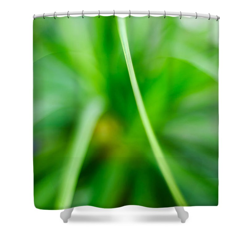 Grass Shower Curtain featuring the photograph Identity by Syed Aqueel
