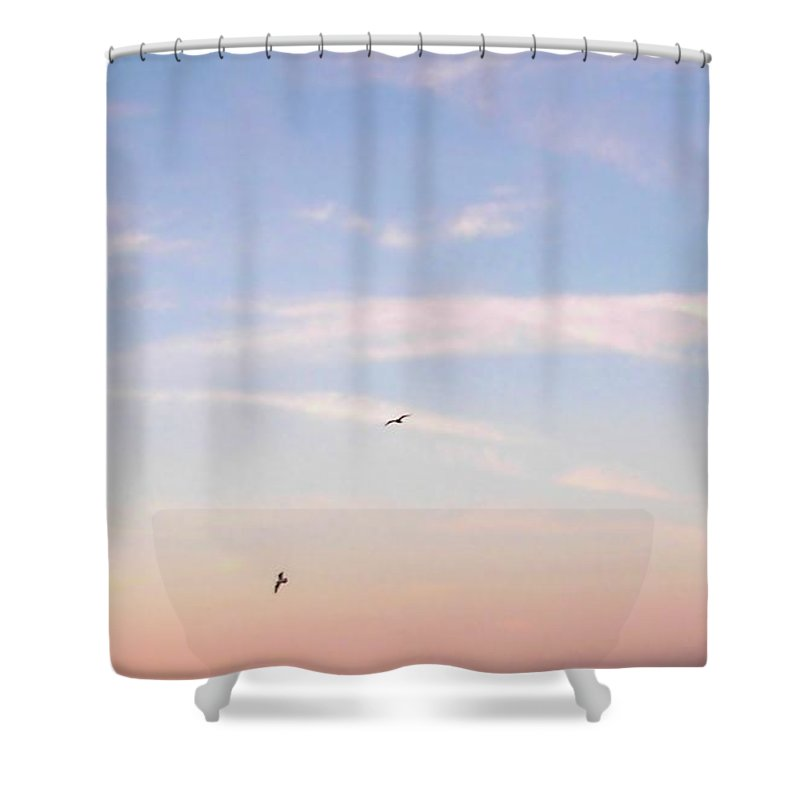 Seagulls Shower Curtain featuring the photograph In Flight Over Rehoboth Bay by Pamela Hyde Wilson
