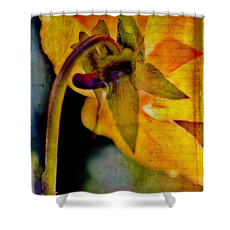 Pressed Shower Curtain featuring the photograph In Grandmother's Memory Book by Judi Bagwell