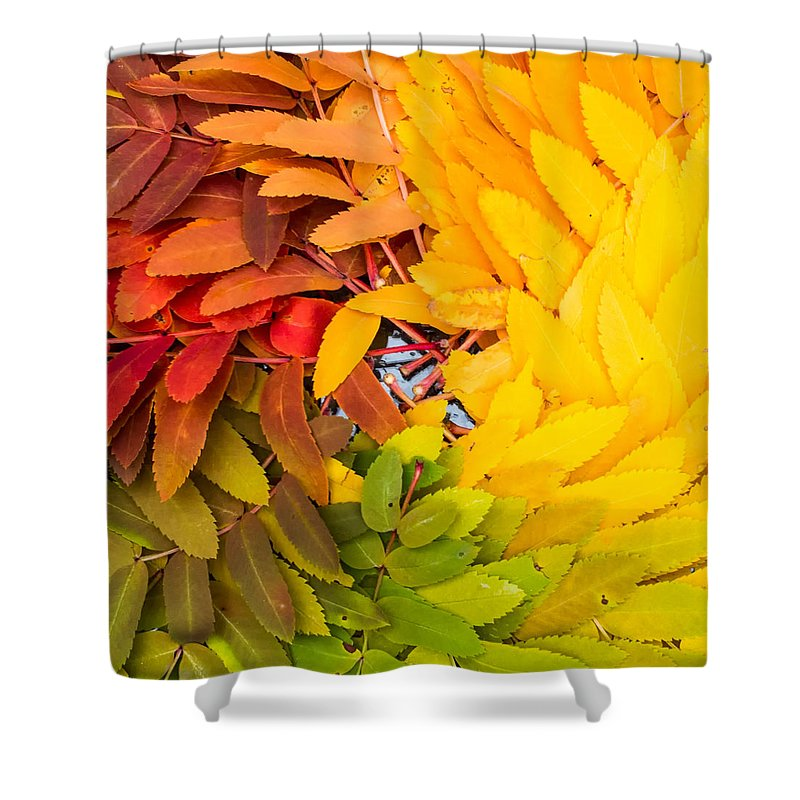 Rainbow Shower Curtain featuring the photograph In Living Color by Aaron Aldrich