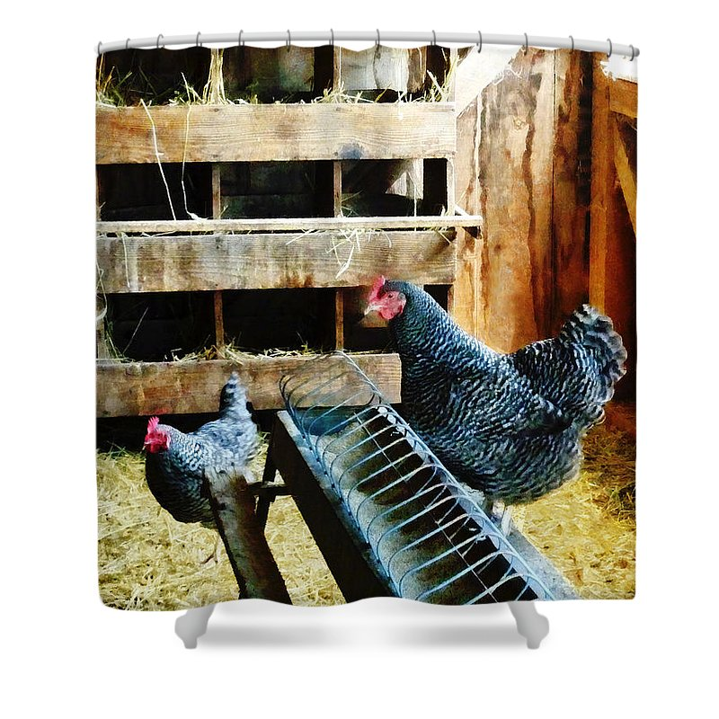 Farm Shower Curtain featuring the photograph In The Chicken Coop by Susan Savad