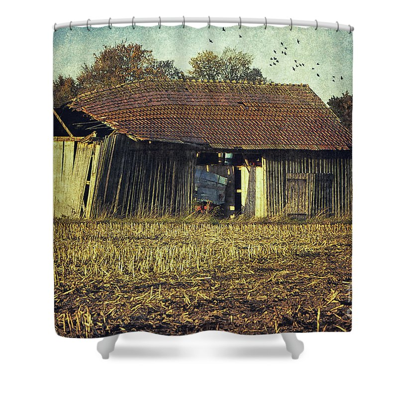 Photo Shower Curtain featuring the photograph In The Country by Jutta Maria Pusl
