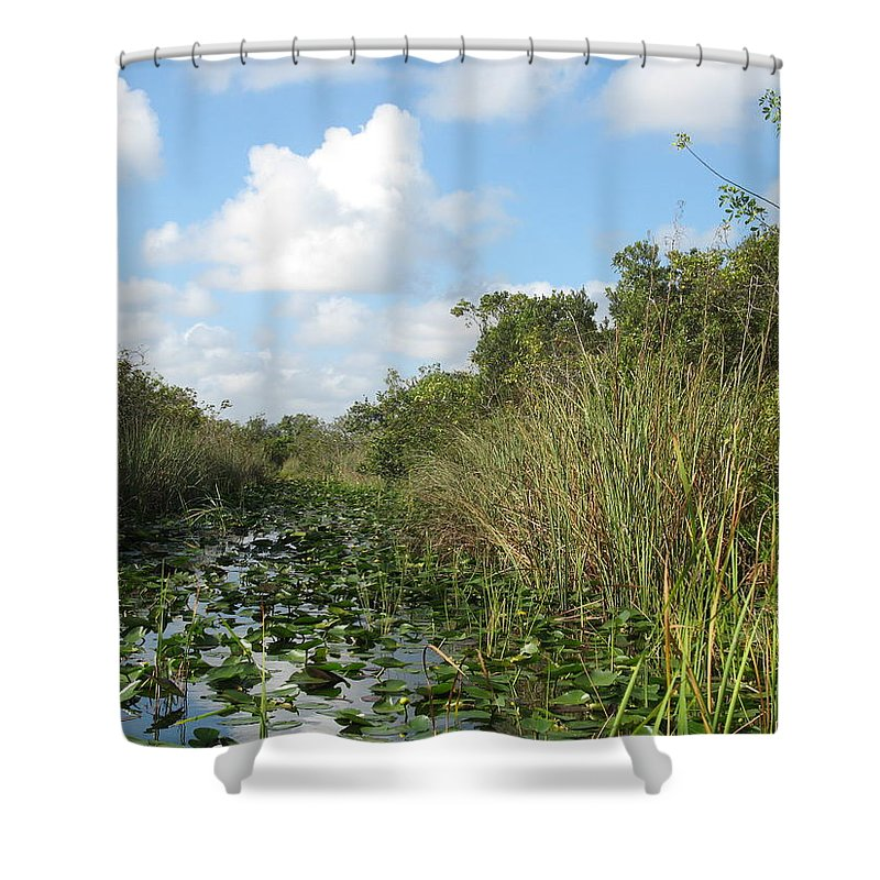 Everglades Shower Curtain featuring the photograph In The Everglades by Christiane Schulze Art And Photography