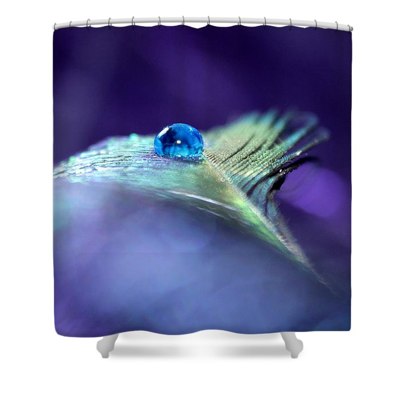 Peacock Feather Shower Curtain featuring the photograph In The Middle Of A Dream by Krissy Katsimbras
