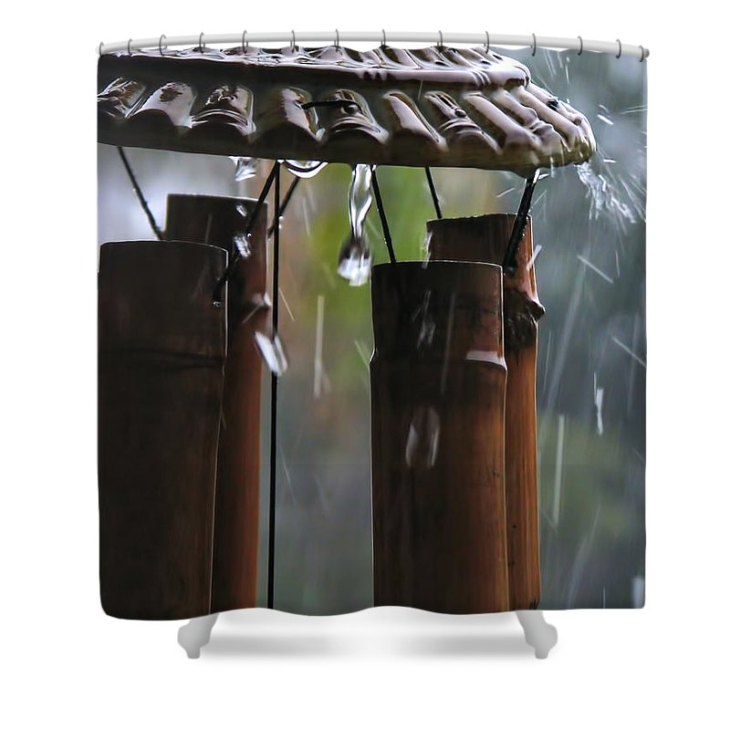 Wind Shower Curtain featuring the photograph In The Rain by Peggy Hughes