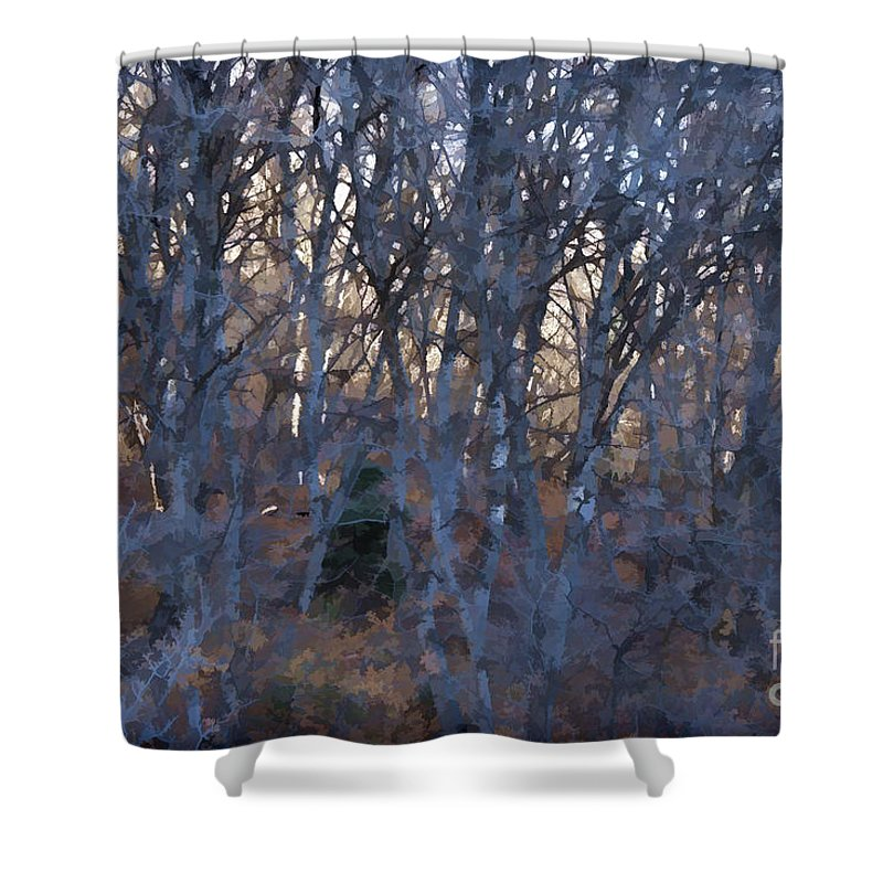 Woods Shower Curtain featuring the photograph In The Woods V2 by Douglas Barnard