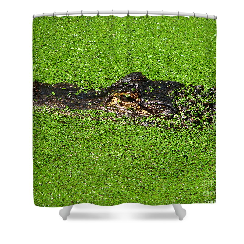 Art For The Wall...patzer Photography Shower Curtain featuring the photograph Incognito by Greg Patzer