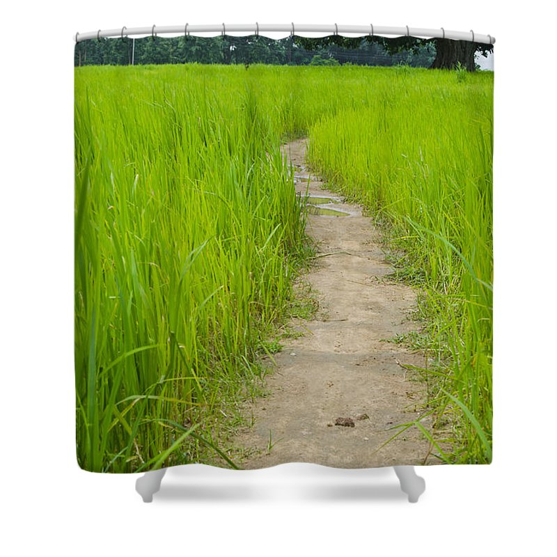 Farm Shower Curtain featuring the photograph Indian Farm by Image World