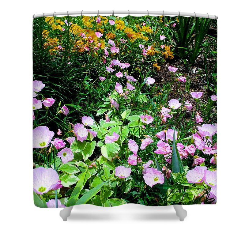 Pink Cosmos Flowers Shower Curtain featuring the photograph Into Yellow by Kendall Kessler